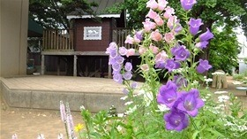 ★幼稚園@川越市・ふじみ野市・さいたま市DSCF3207