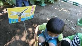 ★幼稚園@川越市・ふじみ野市・さいたま市CIMG5429