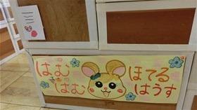 ★幼稚園@川越市・ふじみ野市・さいたま市CIMG7959