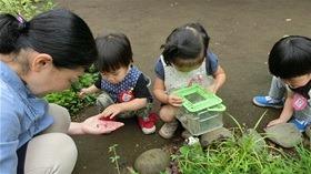 ★幼稚園@川越市・ふじみ野市・さいたま市CIMG8036