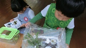 ★幼稚園@川越市・ふじみ野市・さいたま市CIMG7580