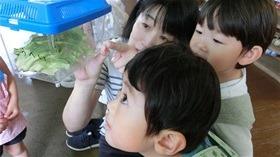 ★幼稚園@川越市・ふじみ野市・さいたま市CIMG7794