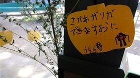 ★幼稚園@川越市・ふじみ野市・さいたま市DSCF4988