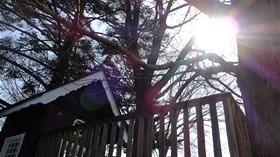 ★幼稚園@川越市・ふじみ野市・さいたま市DSCF9687