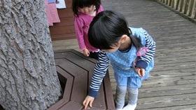 ★幼稚園@川越市・ふじみ野市・さいたま市CIMG2871