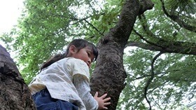 ★幼稚園@川越市・ふじみ野市・さいたま市CIMG2909
