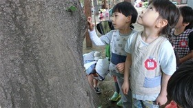 ★幼稚園@川越市・ふじみ野市・さいたま市CIMG5188
