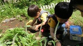 ★幼稚園@川越市・ふじみ野市・さいたま市CIMG3941