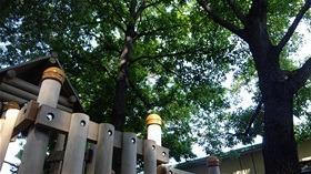 ★幼稚園@川越市・ふじみ野市・さいたま市DSCF3355