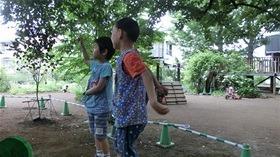 ★幼稚園@川越市・ふじみ野市・さいたま市CIMG6608