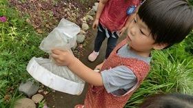 ★幼稚園@川越市・ふじみ野市・さいたま市CIMG6561