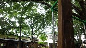 ★幼稚園@川越市・ふじみ野市・さいたま市DSCF3953