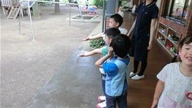 ★幼稚園@川越市・ふじみ野市・さいたま市CIMG8754