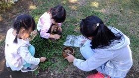 ★幼稚園@川越市・ふじみ野市・さいたま市DSCF4949