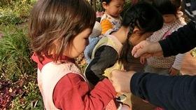 ★幼稚園@川越市・ふじみ野市・さいたま市CIMG9929
