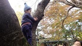 ★幼稚園@川越市・ふじみ野市・さいたま市DSCF5749