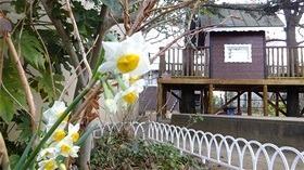 ★幼稚園@川越市・ふじみ野市・さいたま市DSCF6203
