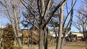 ★幼稚園@川越市・ふじみ野市・さいたま市DSCF6362