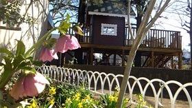 ★幼稚園@川越市・ふじみ野市・さいたま市DSCF6525