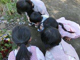 ★幼稚園@川越市・ふじみ野市・さいたま市CIMG0069