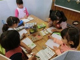 ★幼稚園@川越市・ふじみ野市・さいたま市CIMG0539