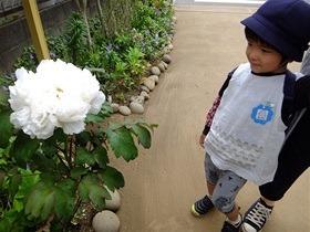 ★幼稚園@川越市・ふじみ野市・さいたま市DSCF9998
